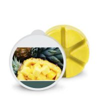 Pineapple Wax Melts 200x200 - Products